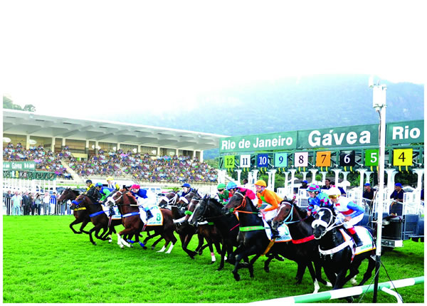 Gavea Horse Tracks