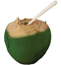 agua de coco OK